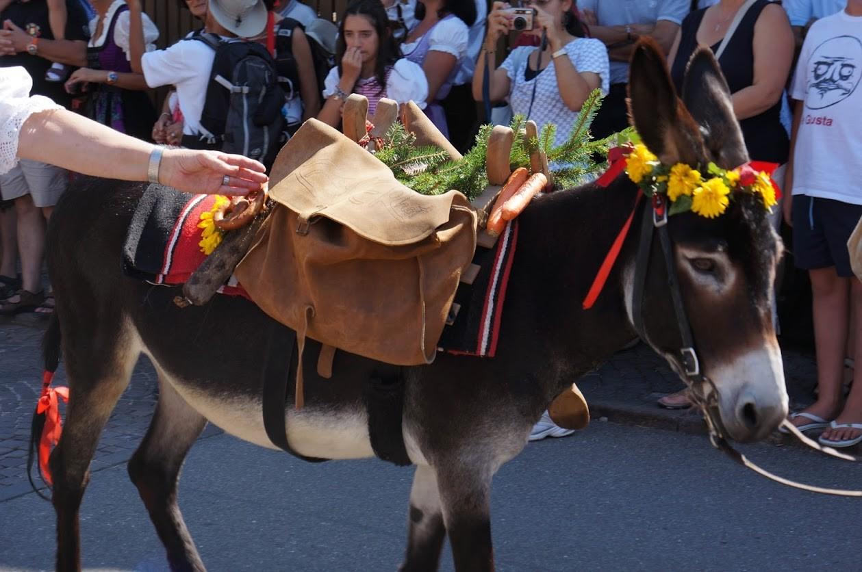 Typisches Volsfest am Ritten