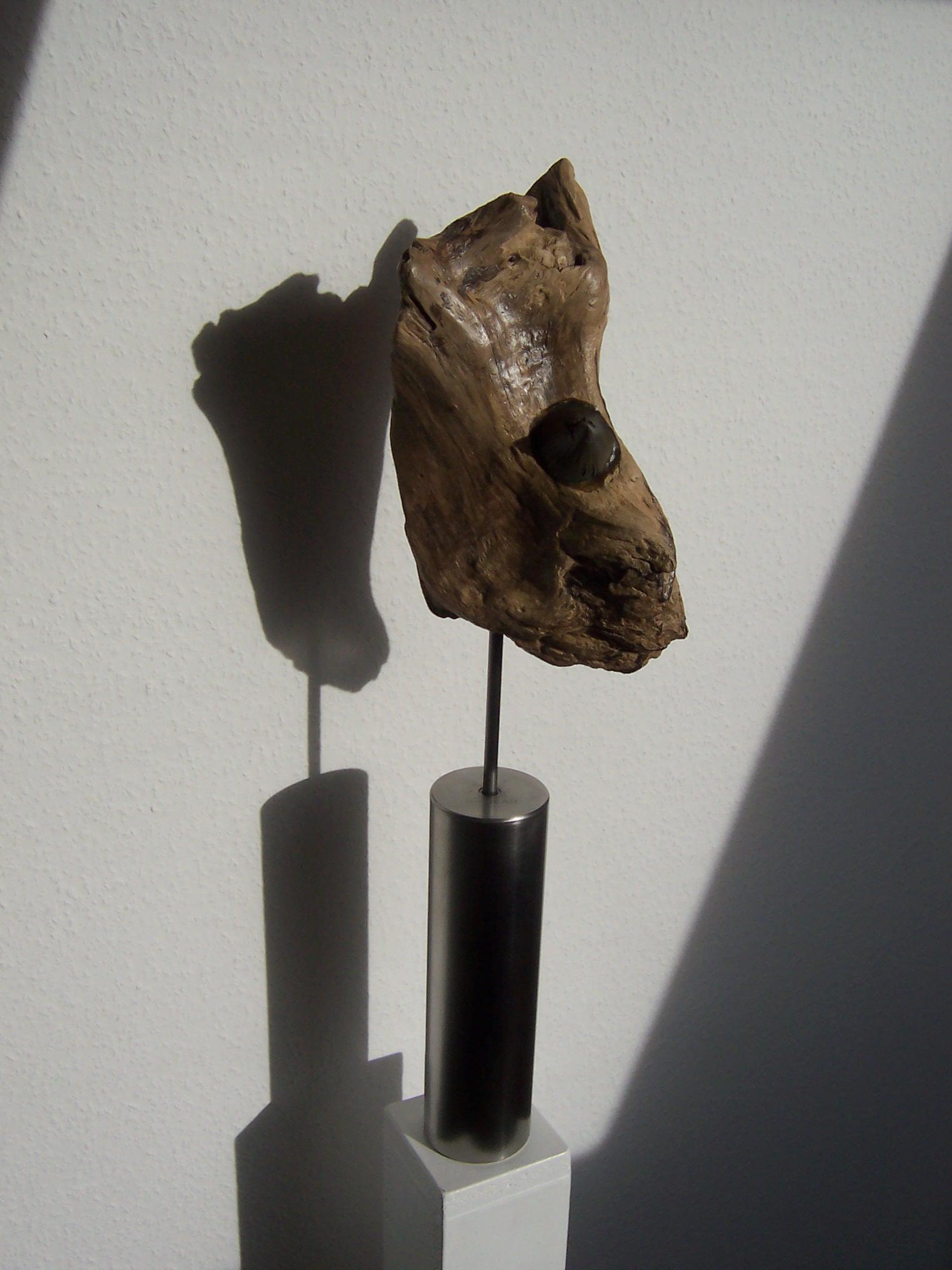 Nashorn  /  Nov. 2008