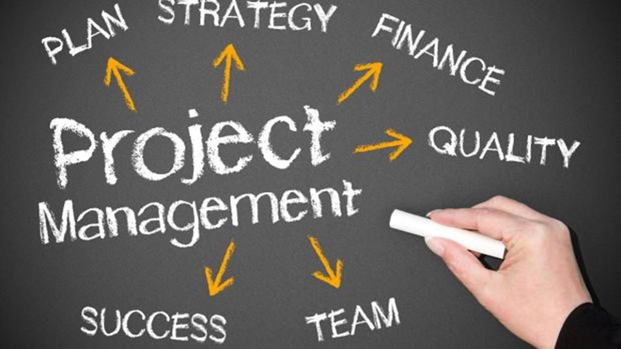 Projectbegeleiding   Projectmanagement   Programmamanagement