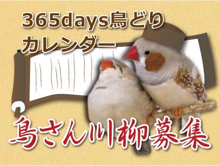 CAP!2019年365days鳥どりカレンダー川柳募集