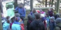 Waldtag der Klasse 5b