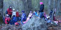 Waldtag Kindergarten