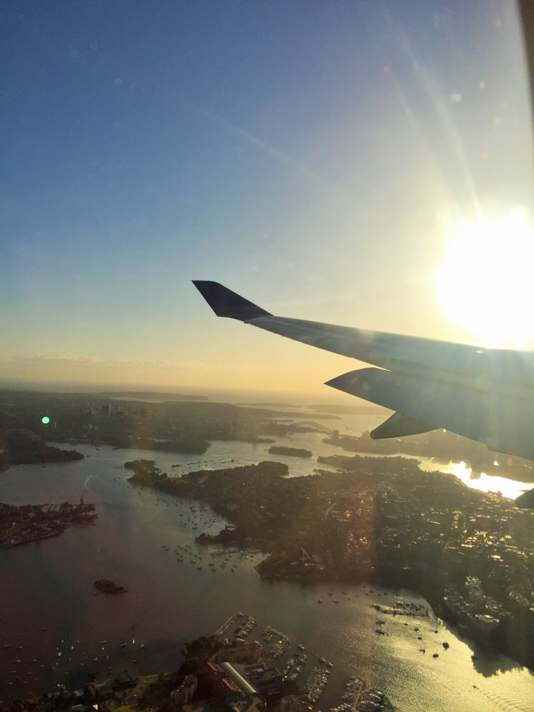 Sydney von oben ☀️