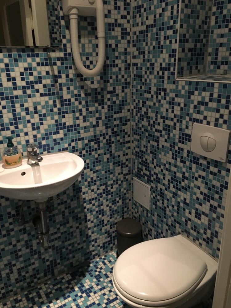 タンク式でなければ最高だった、シャワー&トイレ