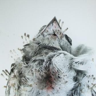 MARIELIS SEYLER, Vogelkehle, aus natura naturata, 1993, Fotoemulsion auf Barytpapier, Leimfarbe, 75x98,5cm