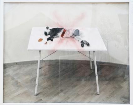 MARIELIS SEYLER, Hase auf Tisch, aus natura naturata, 1994, Fotoemulsion auf Barytpapier, Collage, Kreide, 76x100cm