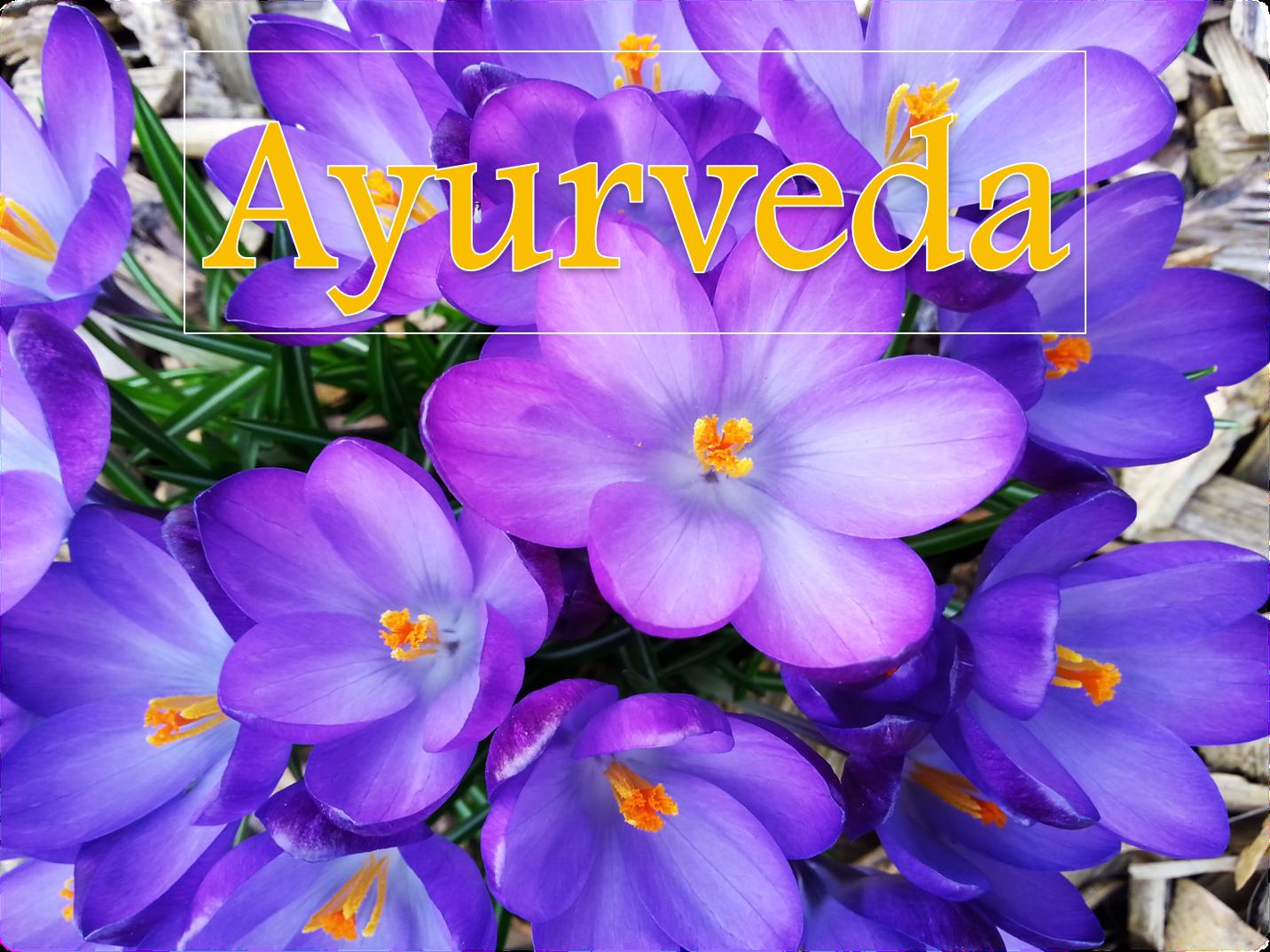 Was ist Ayurveda-Medizin