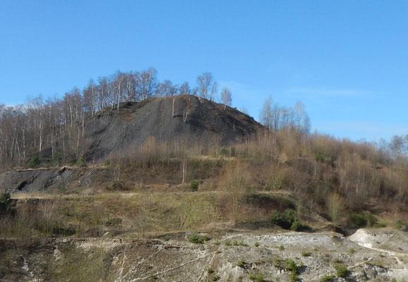 Oranje Nassau IV-mijn, steenberg