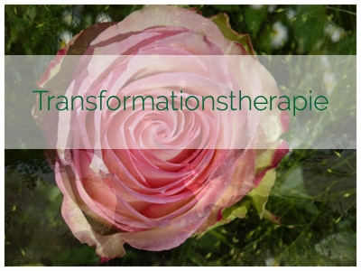 Was ist Transformationstherapie?