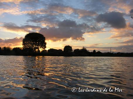 Coucher de soleil sur la lagune des Jardins de la Mer, le 28 novembre 2012
