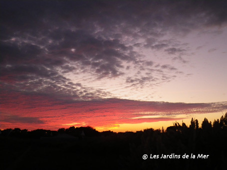 Coucher de soleil 29 août 2011