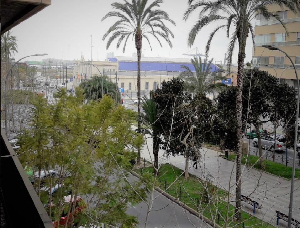 Locales y Oficinas en alquiler en Avenidas Oscar Espla junto Puerto Alicante