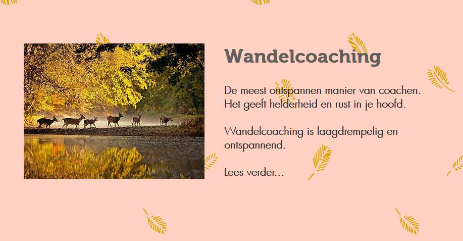 Wandelcoaching Drenthe
