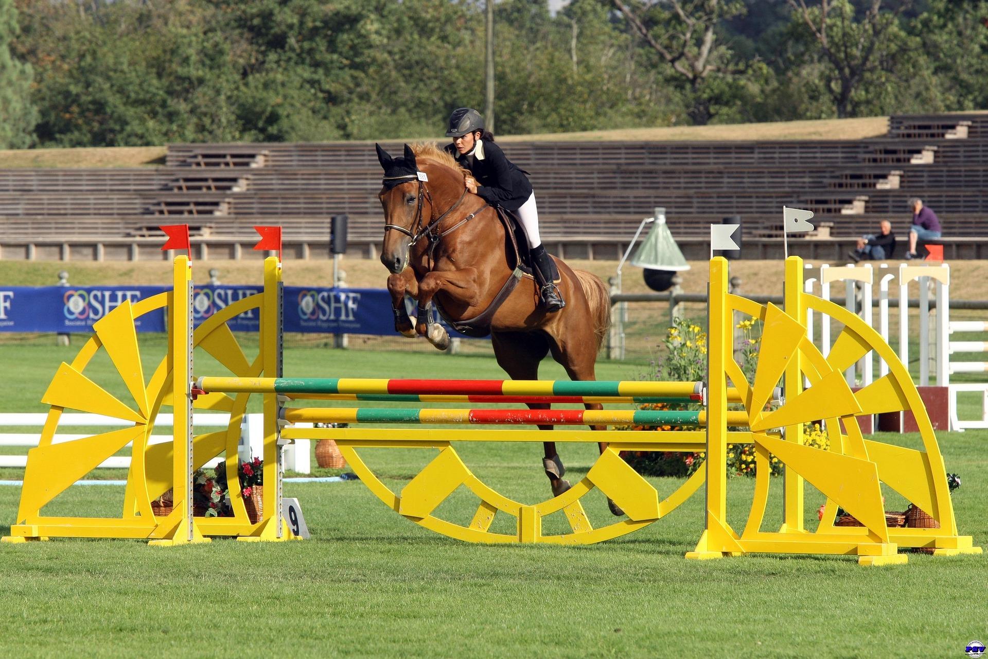 Est-ce-que votre cheval sera toujours aussi serein quand les gradins seront remplis par une foule enjouée ?