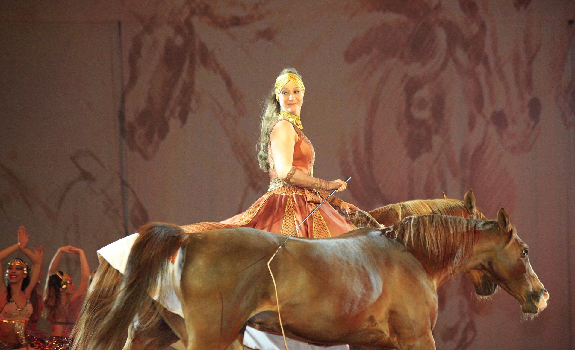 Êtes-vous un cavalier à l'aise face à un public ?