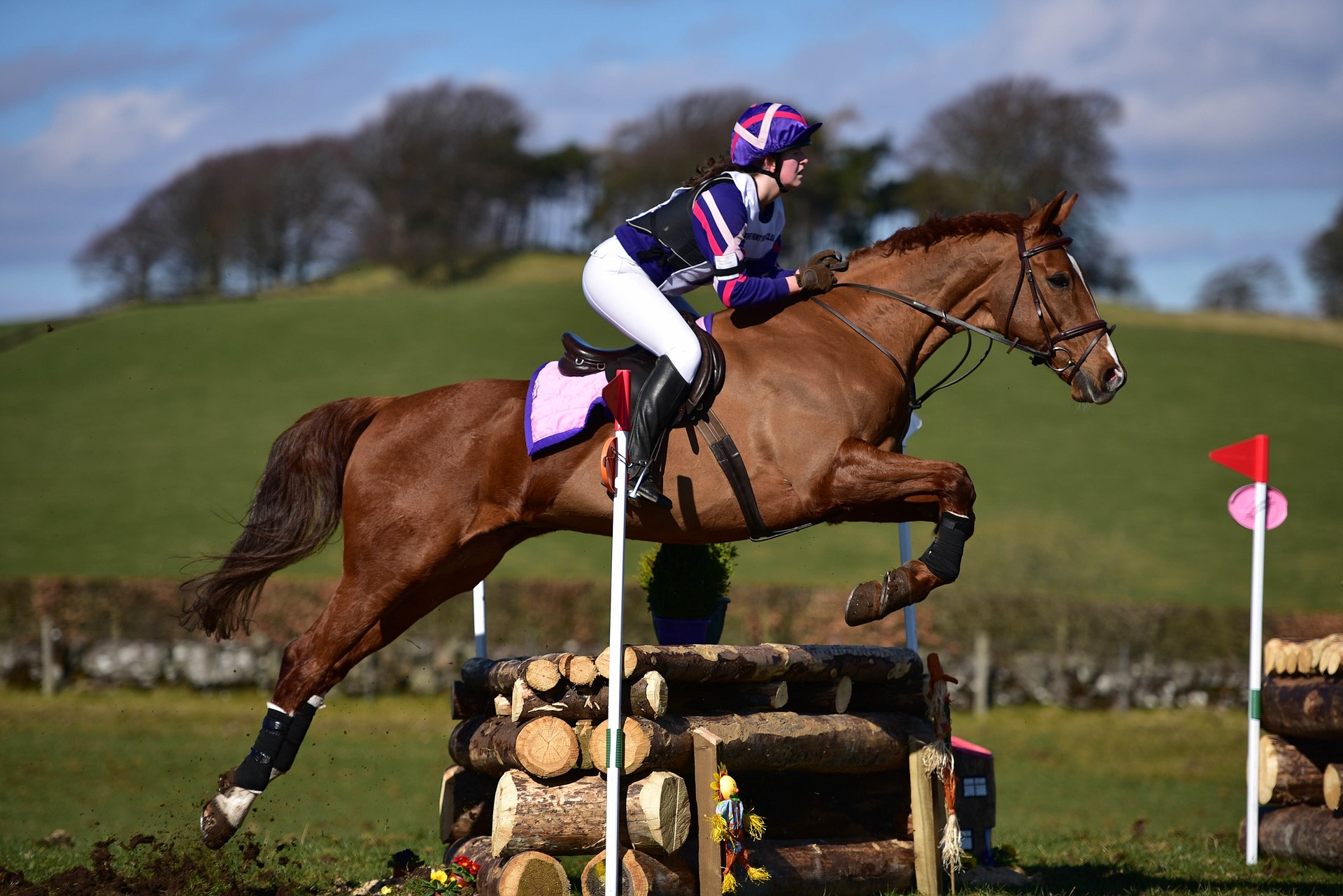 Êtes-vous un cavalier fait pour les disciplines équestres rapides et à risques  ?