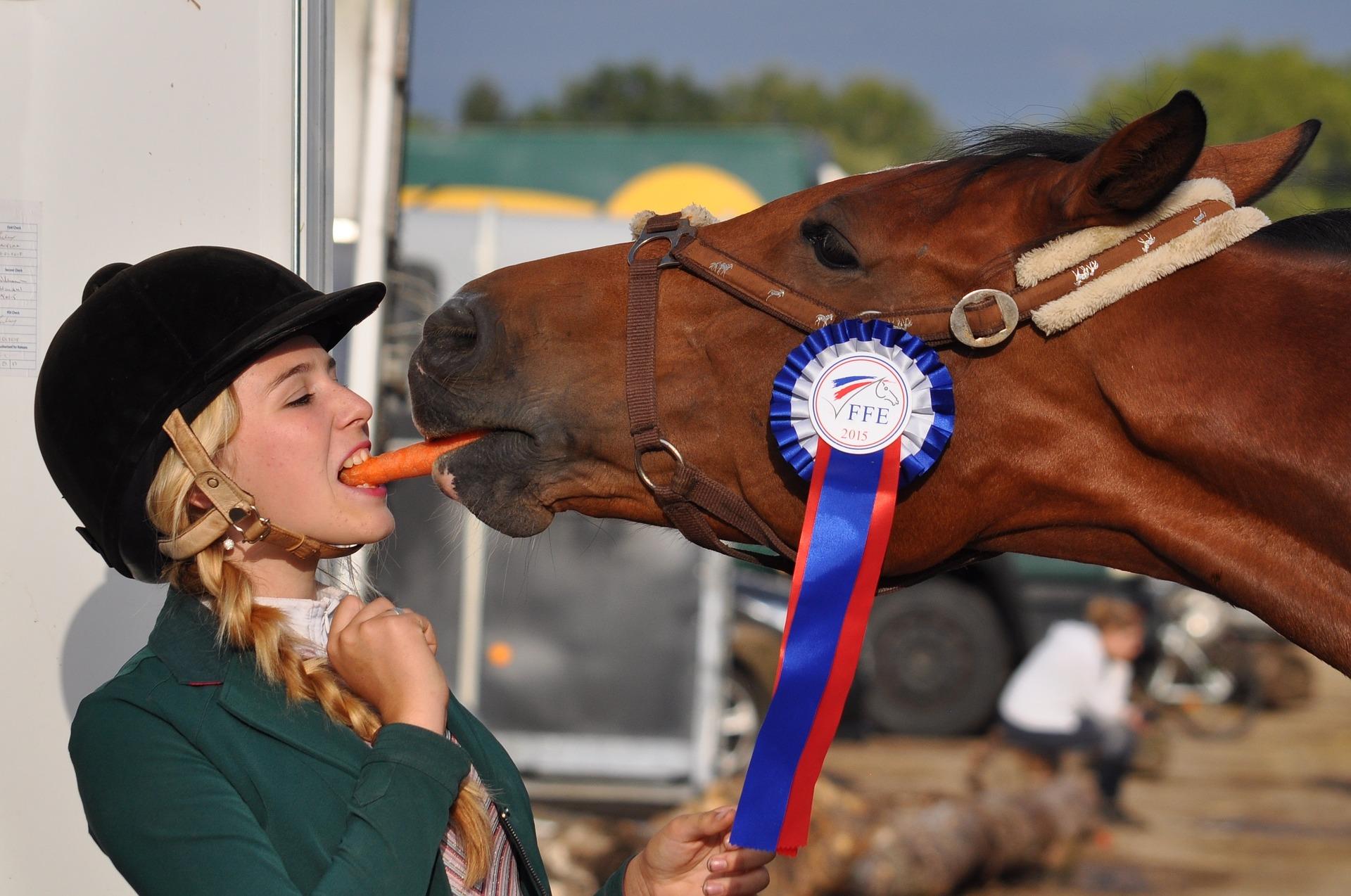 Est-ce-que votre cheval est digne de confiance ?