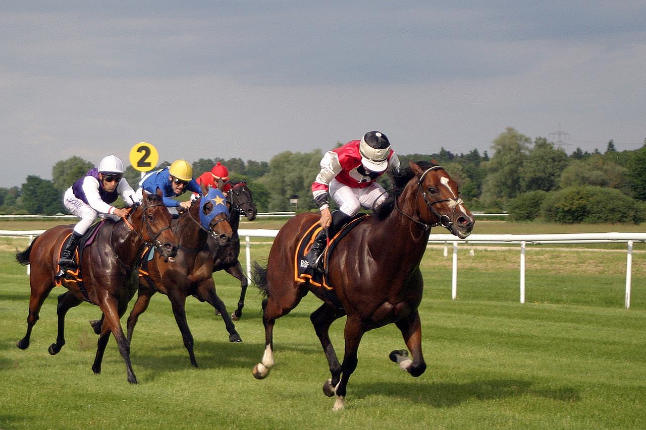 Est-ce-que votre cheval a un tempérament déterminé et gagneur ?