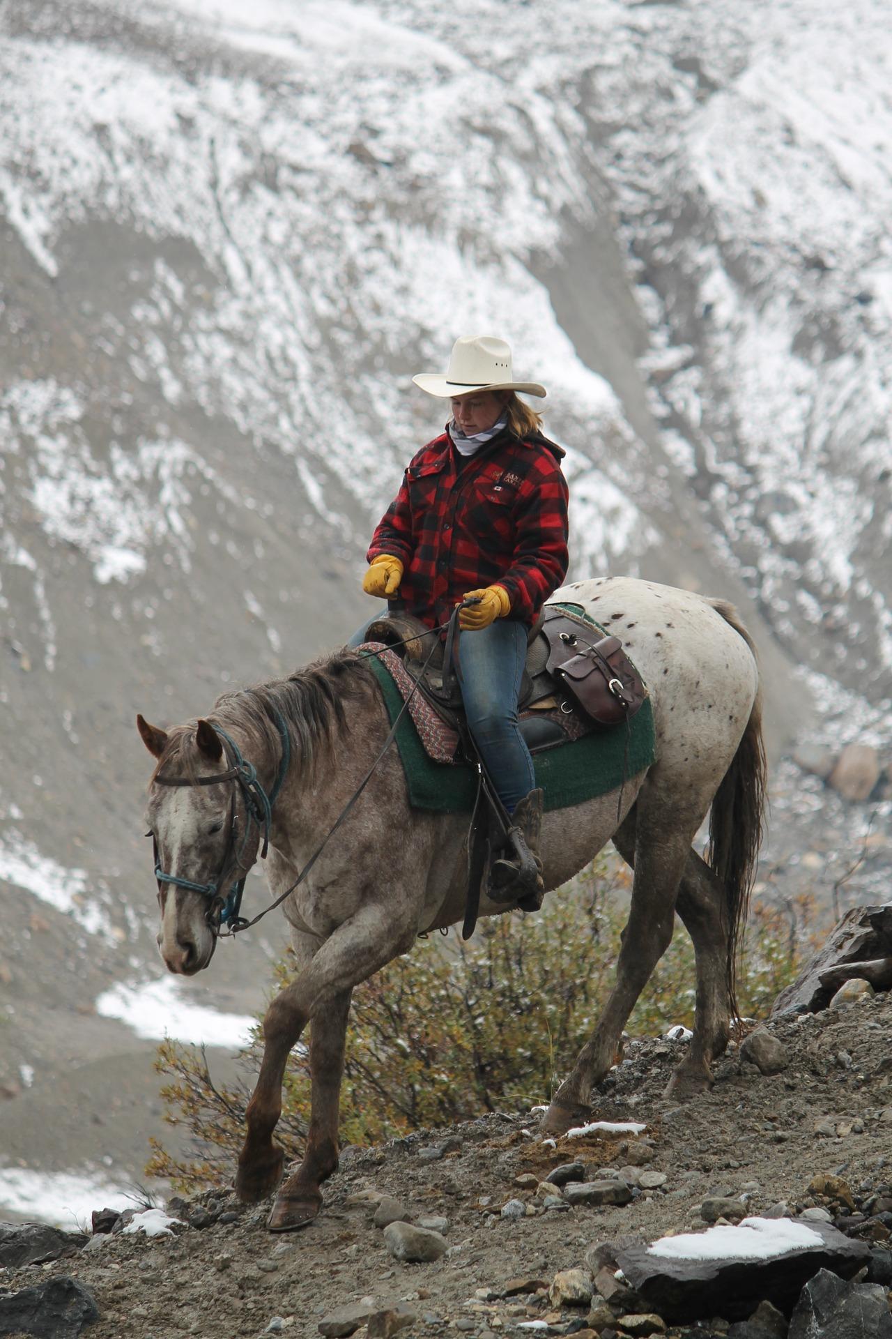 Est-ce-que votre cheval est un solitaire  ?