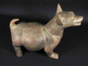Techichi: perro mejicano