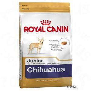 Foto de pienso seco para la raza de perros chihuahua cachorros. Alimentacion perros de raza chihuahua cachorros. Alimentacion perros chihuahua. Alimentacion perro chihuahua 1 mes. Alimentacion perro chihuahua cachorro.