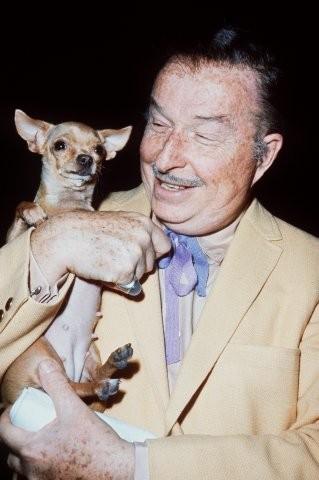 Foto de Marilyn Monroe con su perro de raza chihuahua de pelo corto