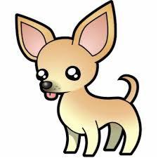 Chihuahua de pelo corto. Chihuahuas pelo corto características.Tipos de chihuahua. Razas de perro chihuahua. Clases de chihuahua. Chiguaguas caracteristicas. Tipos de chihuahueño. Perros chihuahua.