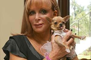 Foto de Gail con su chihuahua hembra de pelo corto