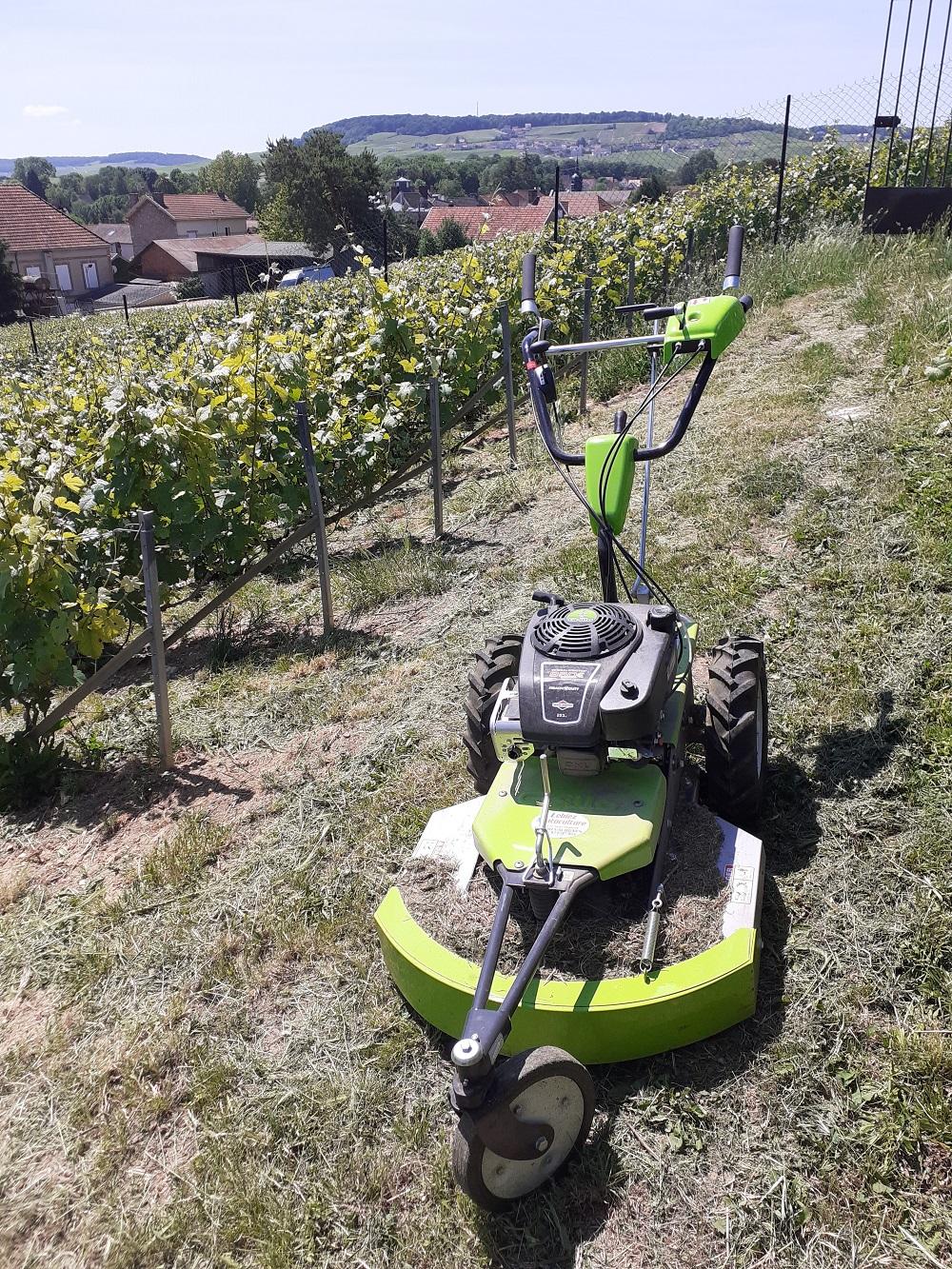 tondeuse pour entretien des vignes