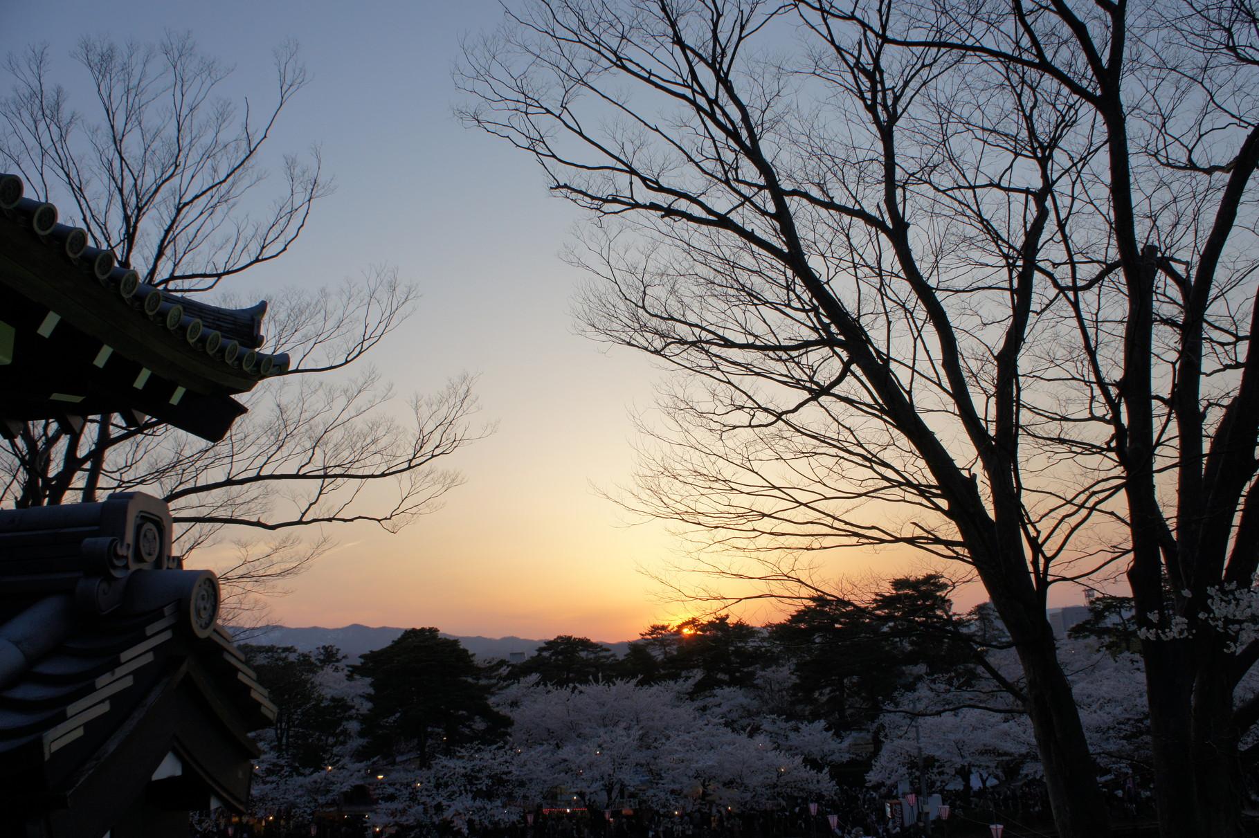 夕暮れどき。いよいよ夜桜のスタート