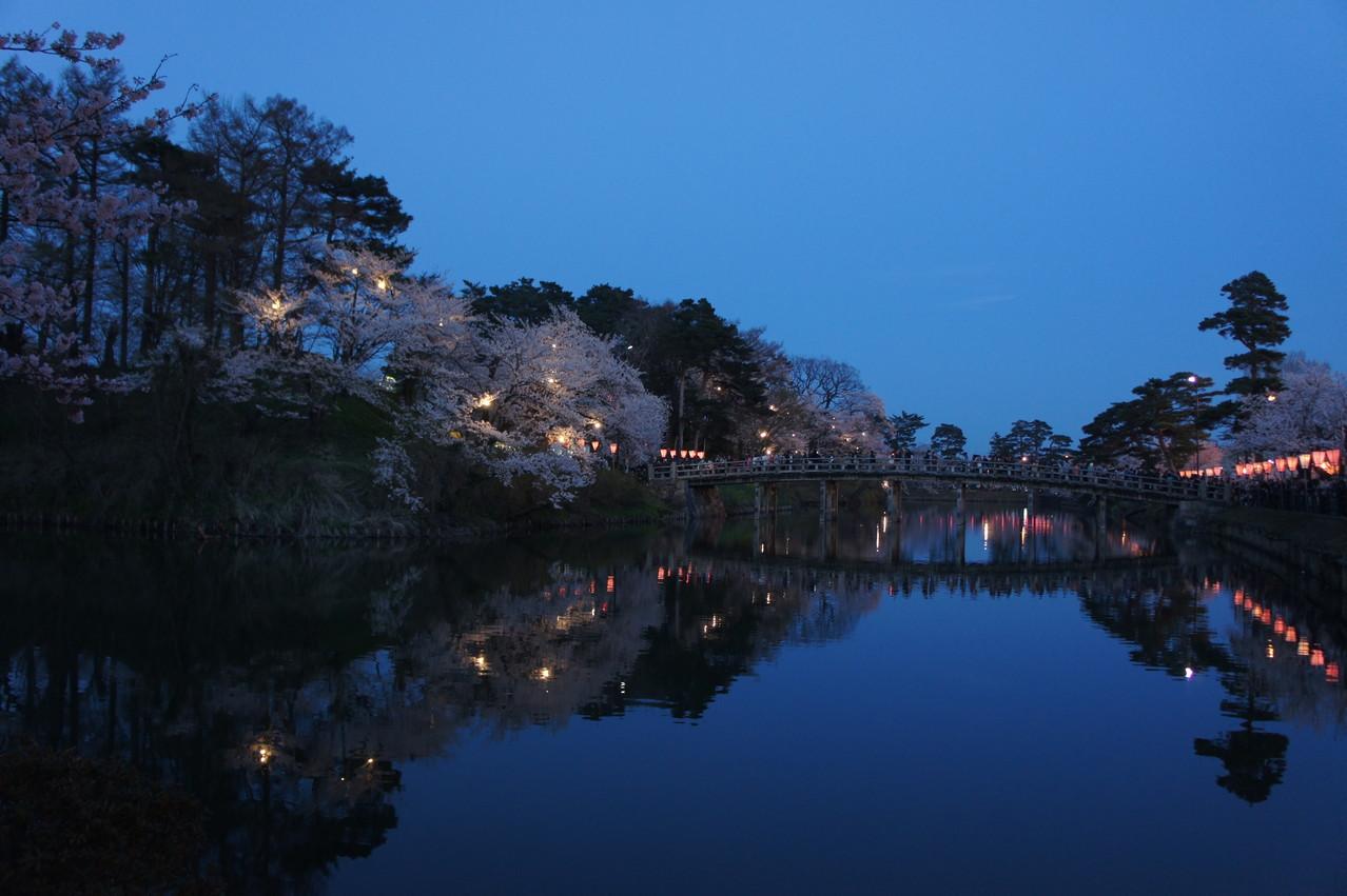 お堀に浮かぶ桜たち