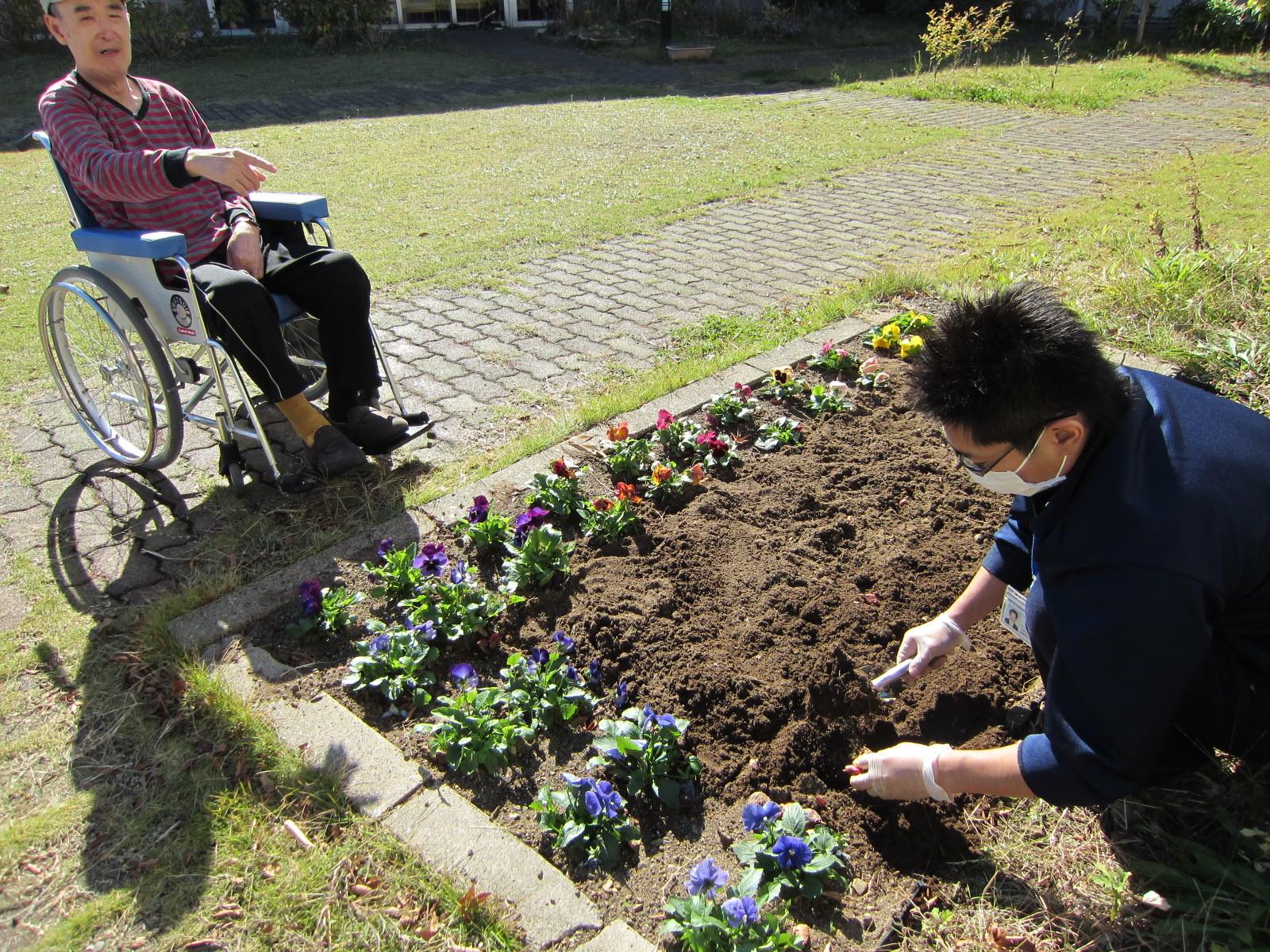 「花咲かじいさん」からのご指示をいただきながら、スタッフが手際よく、植えていきます