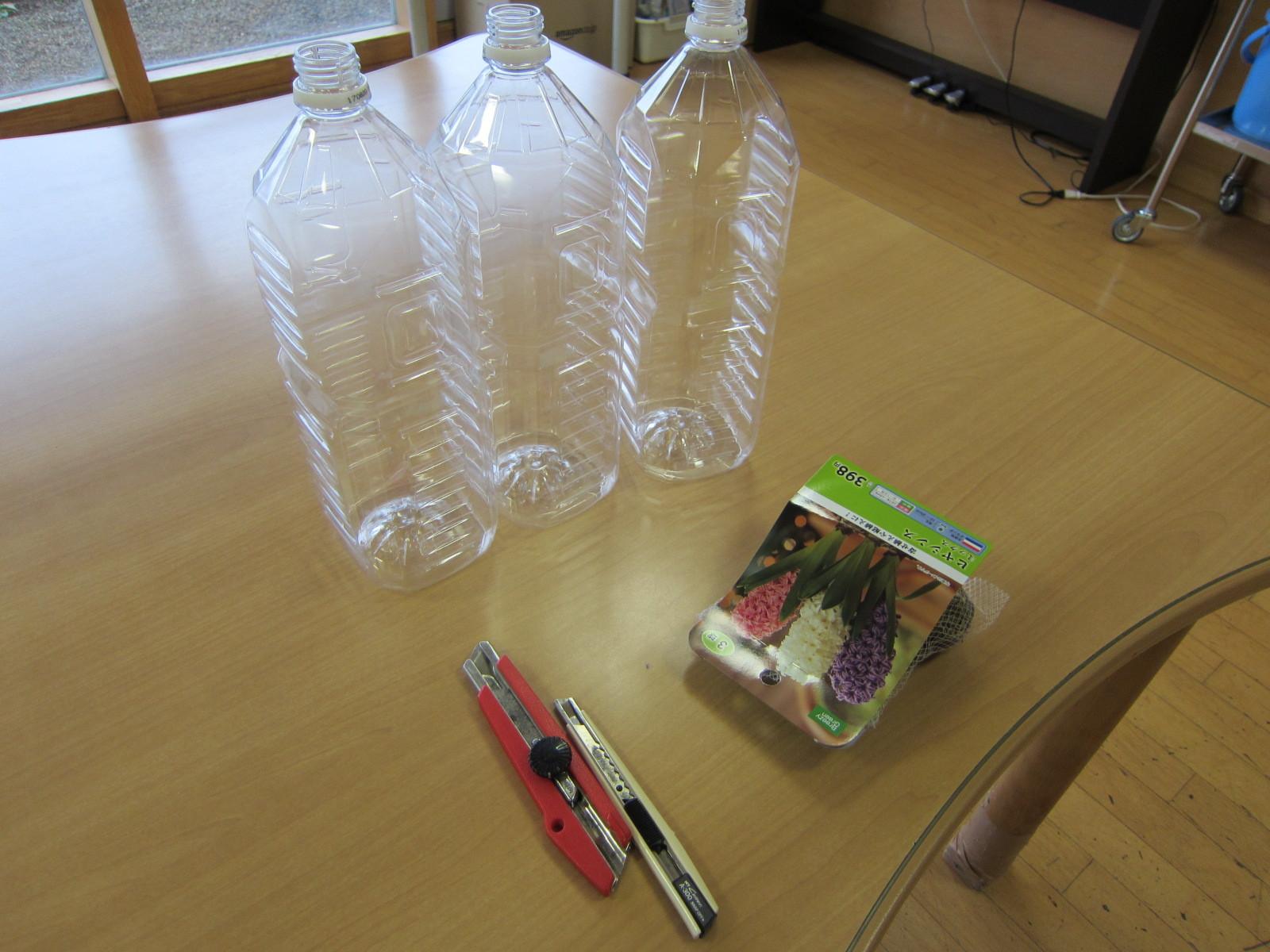 施設の中では「ヒヤシンス」の水栽培に挑戦!