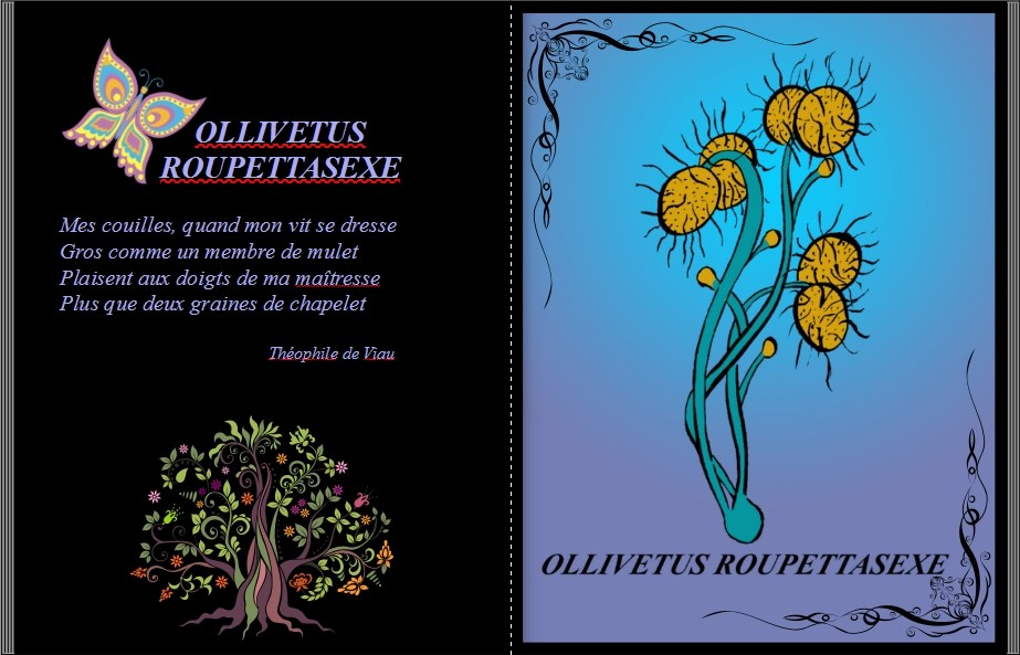 "Jean-Pierre B - ""Botaniculs"" Livre Photo 26 Pages 21x29 extraits"