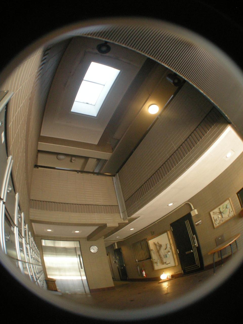 エントランスホールの天窓