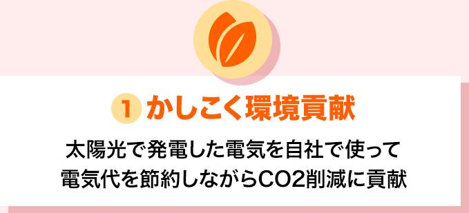 かしこく環境貢献 電気代を節約しながらCO2削減