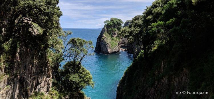 Cueva Tito Bustillo © Turismo Asturias