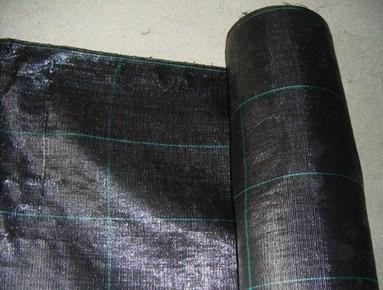 Malla geotextil antihierva ( 1m alto )