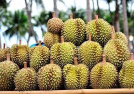 Etale de Durian en Asie