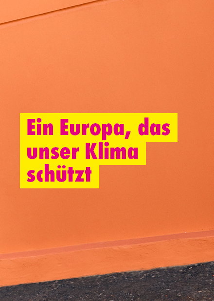 https://www.fdp.de/ein-europa-das-unser-klima-schuetzt