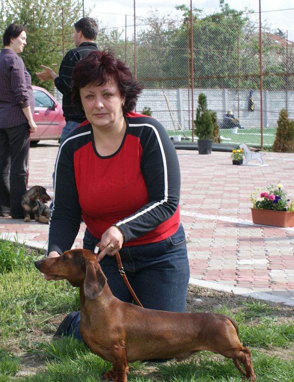 Goldader Prior - (21.04.2012 Satu Mare)