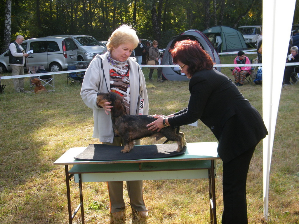 Tar Kristina (judge), Mateszalka
