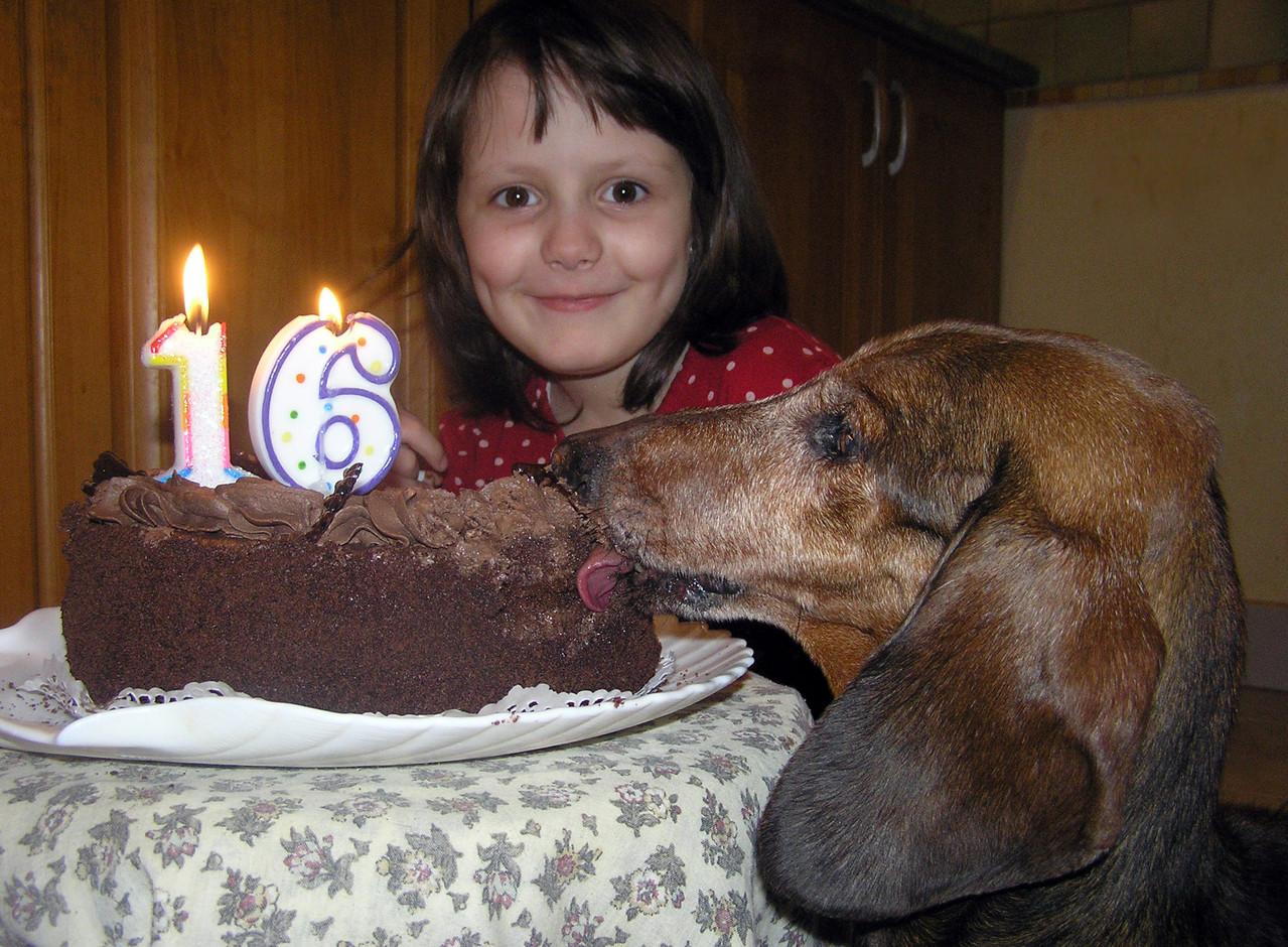 Niki and Sans vom Golf (Sans have birthday 16 years)