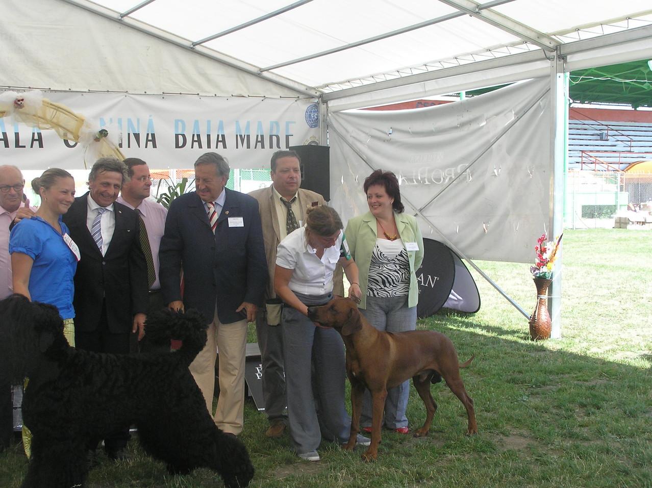 Tar Kristina (judge fci), Baia Mare 2012