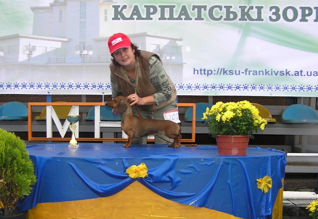 Goldader Kurazhnaja Kapelyka BIG-I