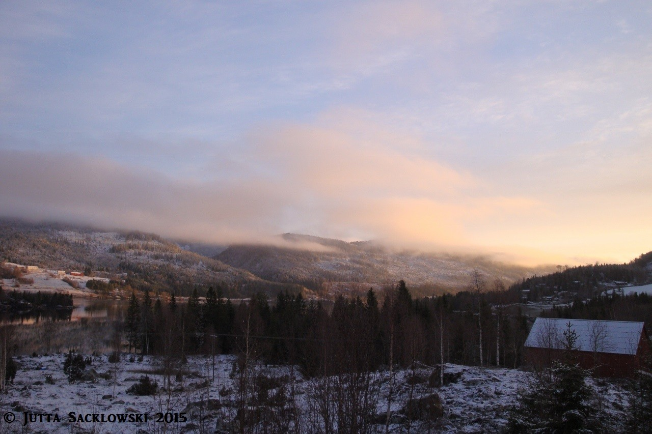 Morgens um 5.00 - Blick von der Terrasse