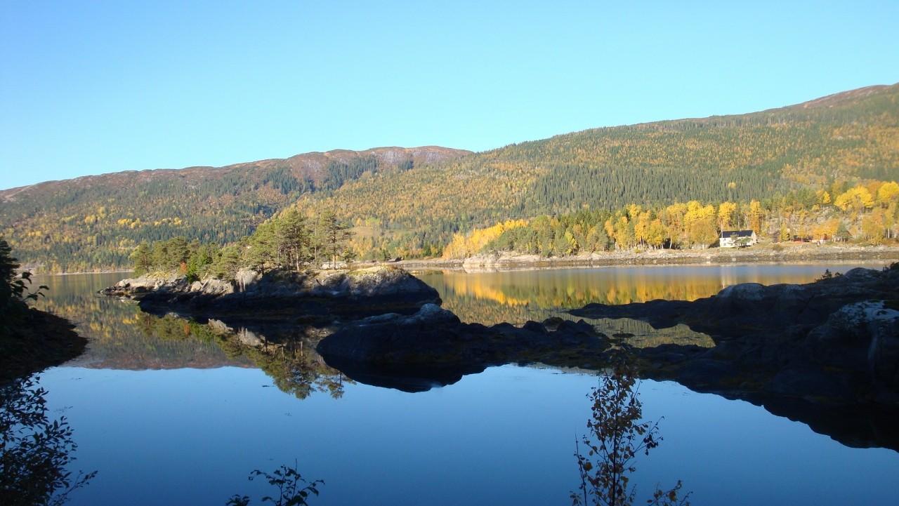 Fjordaussichten
