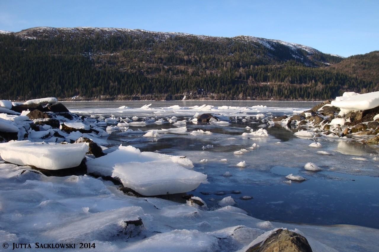 Gefrorenes Salzwasser ist elastischer als Süsswasser