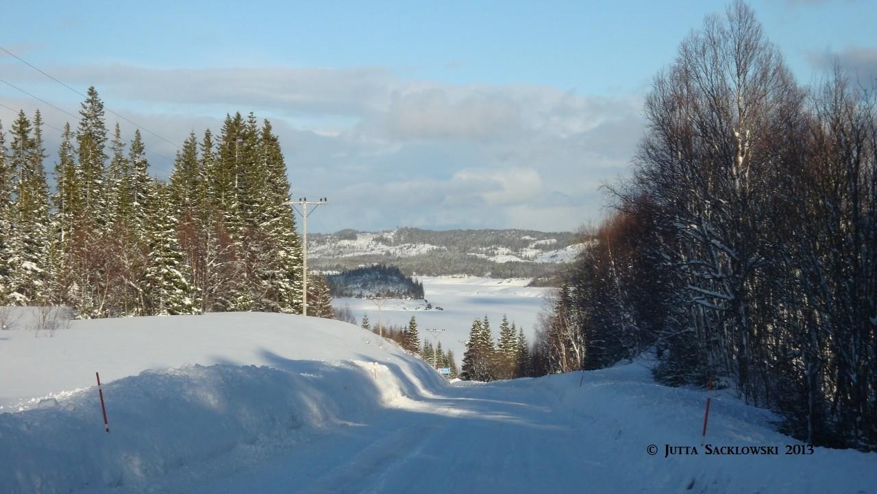 Schneelandschaft auf dem Weg nach Hause