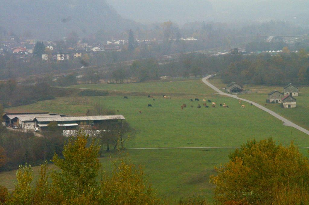La grande azienda agricola di vacche nutrici ai piedi della discarica. Sullo sfondo Lostallo. (Foto dalla discarica)